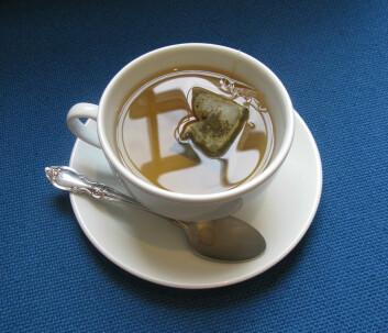 Grønn te. (Foto: Kingston University London)