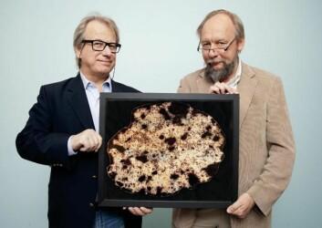 Professorene Håvard Danielsen og Fritz Albregtsen har utviklet et avansert dataprogram som kan beregne hvor alvorlig kreften er ved å studere hvordan DNA-strengen er pakket sammen i cellekjerner. (Foto: Yngve Vogt)
