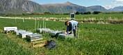 Slik oppstår klimagasser i jordbruket
