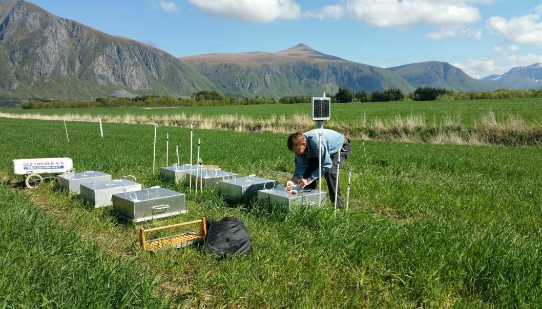 Det er særlig to klimagasser som relateres til jordbruket: metangass og lystgass. Her måler forsker Sverre Heggset utslipp av disse klimagassene i omgravd og grøfta myr.