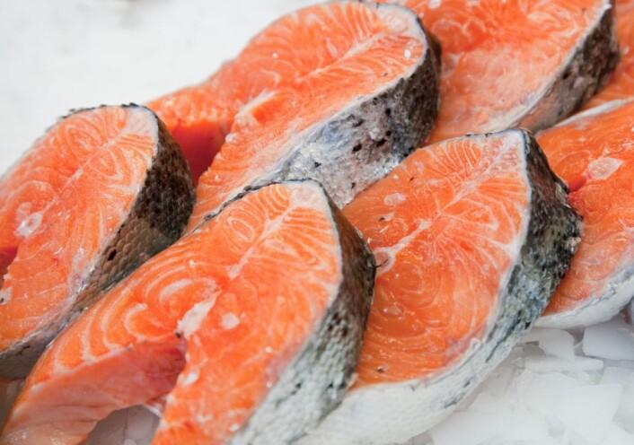 Superkjøling av laks gjør at fisken beholder fersk kvalitet lenger, at folk kaster mindre fisk og gir mindre utslipp av CO2. (Foto: Marianne Nordahl)