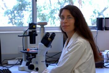 Det er forskeren Foteini Hassiotou fra University of Western Australia som står bak studien. – Stamceller i morsmelk er en ny og spennende mulighet for å få adgang til en rik kilde av stamceller uten å støte inn i etiske barrierer, sier hun. (Foto: Foteini Hassiotou)