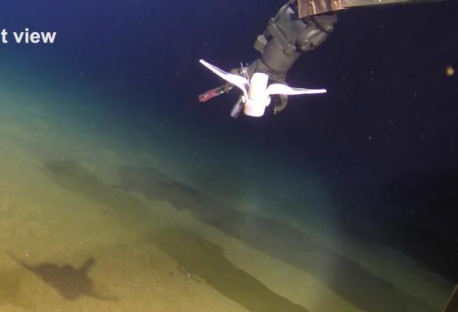 Denne lille, myke roboten svømmer flere tusen meter under havet