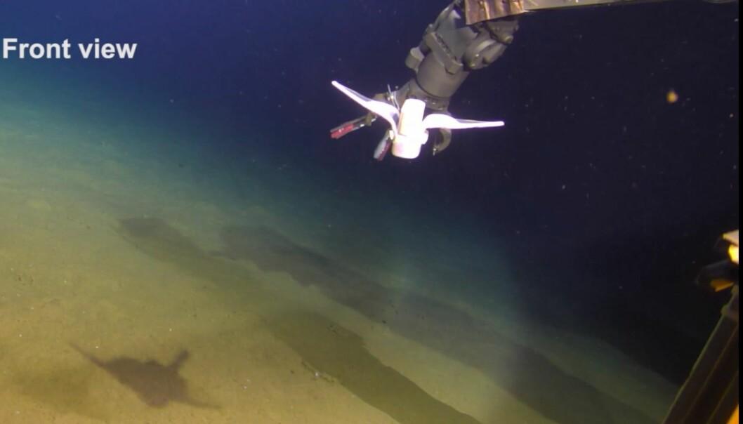Her testes den lille, myke roboten langt under havet. Den svømmer fra en robotarm, som du kan se i bakgrunnen.