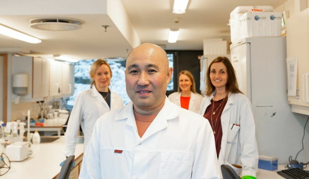Forskerne Takaya Saito, Kaja Skjærven, Eva Mikkeltveit og Ann-Catrin Adam har undersøkt hvordan mikronæringsstoffene i fôret påvirker genene (Marit Espe var ikke tilstede da bildet ble tatt).