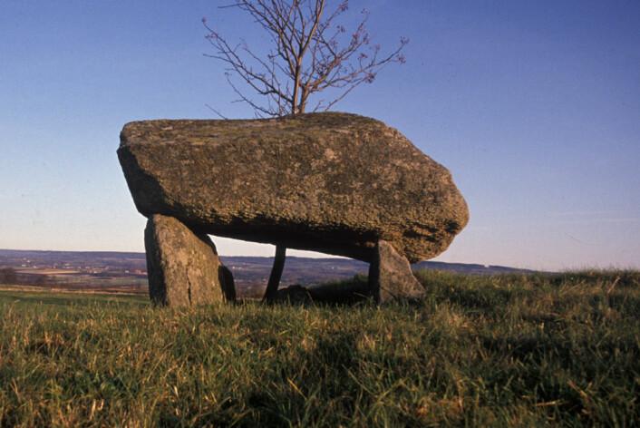 Flere hundre slike steingraver finnes i Falbygden-området i Sverige. Disse har forbindelse med de tidlige jorbrukssamfunnene. (Foto: Göran Burenhult)