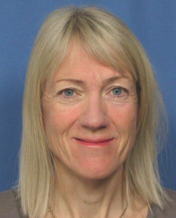 Anne Lise Brantsæter. (Foto: FHI)