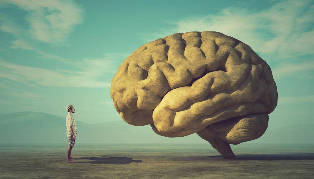 Selv om alle piler peker i samme retning, er det vanskelig for hjernen å oppfatte en trussel den ikke har opplevd før.