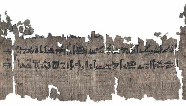 Papyrusrullen er det nest lengste medisinske dokumentet som er funnet fra gamle Egypt.