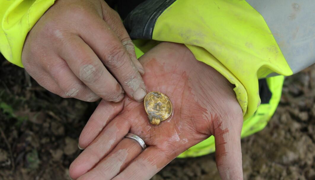 Gull forringes ikke, selv om det har ligget mer enn tusen år i leirjord. Gullbrakteater kan imidlertid være skjøre. Renheten av gullet er høyt, noe som gjør gullbrakteaten myk og lett å bøye.
