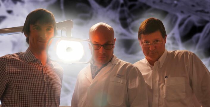 Tre odontologer uten framtidsskrekk: Fra venstre Håvard Haugen, forsker ved avdeling for biomaterialer, Anders Verket, stipendiat og spesialistkandidat i periodonti og Petter Lyngstadaas, leder for avdeling for biomaterialer, og forskningsdekan. Alle tre arbeider ved Institutt for klinisk odontologi ved Universitetet i Oslo. (Foto: Arnfinn Christensen, forskning.no.)