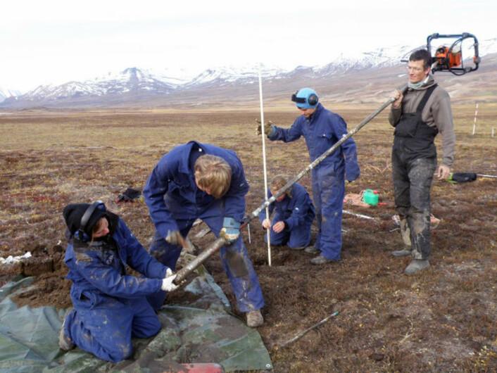 København-professor Bo Elberling (t.h.) og UNIS-studenter tar boreprøver av permafrost ved Zackenberg på det nordøstlige Grønland i forbindelse med den nye studien. (Foto: Hanne C. Christiansen/UNIS)