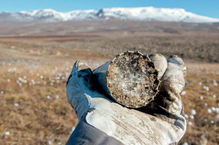 Prøve av permafrost med mye is, tatt ved Zackenberg på Grønland. (Foto: Bo Elberling, CENPERM, Center for Permafrost, Københavns Universitet)