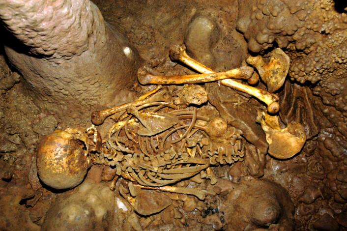 Skjelettet i La Braña-Arintero-hula, slik det ble funnet i 2006. (Foto: J.M. Vidal Encina)