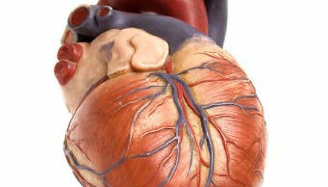 Et friskt hjerte har godt av fysisk aktivitet. Colourbox