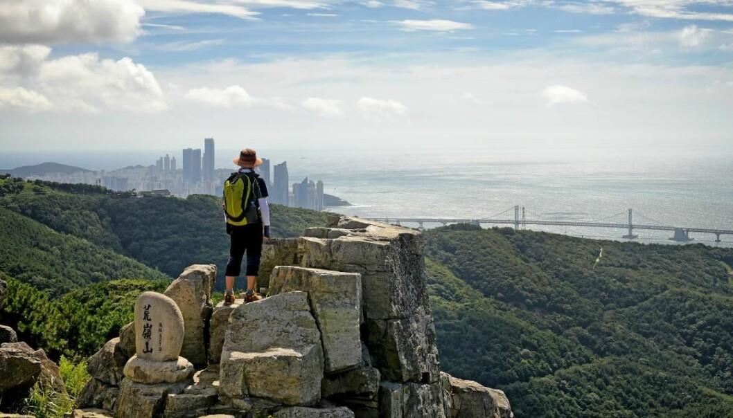 Utsikt fra en mye besøkt topp i Busan