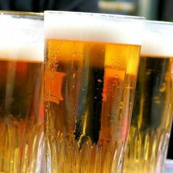 Øl skal helst smake av de ingrediensene bryggeren putter i. Et nytt anlegg skal hjelpe små bryggerier til å lage det perfekte brygget – uten bismak. (Foto: Colourbox)