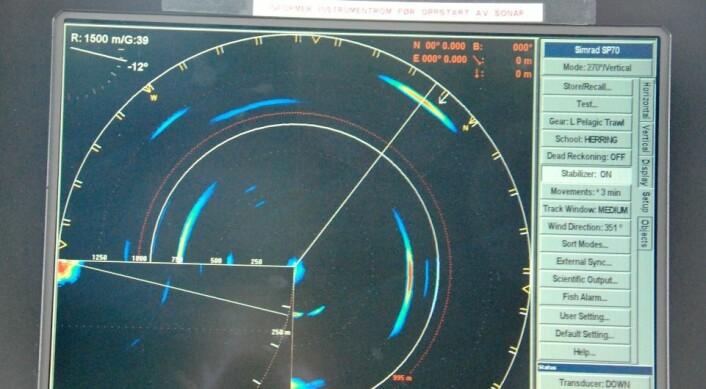 Bingo. Sonaren blinker ut en sildestim som Vindenes sannsynligvis kan klare å få i trålen. (Foto: Hanne Østli Jakobsen)