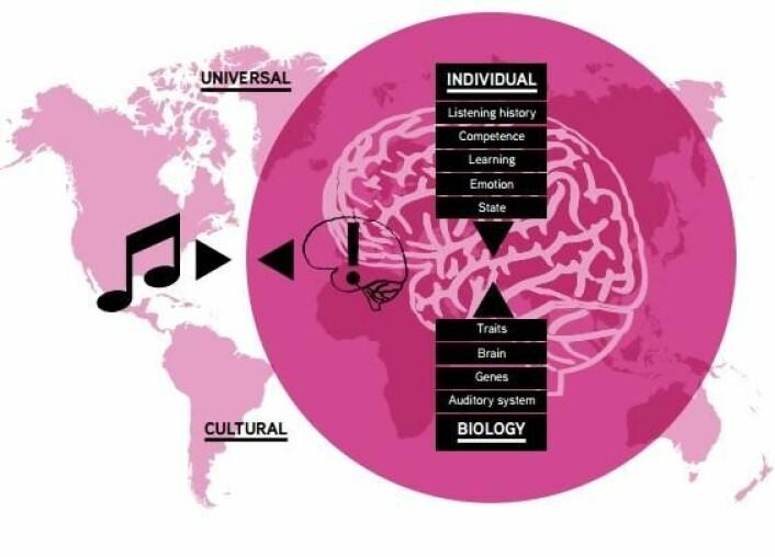 Når vi hører på musikk, prøver hjernen hele tiden å forutsi musikkens struktur basert på noen generelle, kulturelle og individuelle «regler». Når forskerne evaluerer effekten av musikkintervensjon i klinisk henseende, er det derfor nødvendig å vurdere hvilket av de tre man vil påvirke. (Foto: (Grafikk: Hvitboken «Music interventions in Health care»))