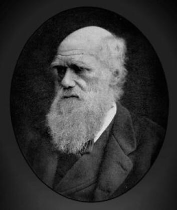 Charles Darwin skrev i 1851 om noe han syntes var interessant i havet ved Norge. Siden har få brydd seg om det. (Foto: Wikimedia Commons)