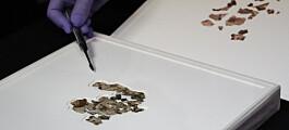 Israel har funnet deler av 2000 år gammel bibelsk skriftrull