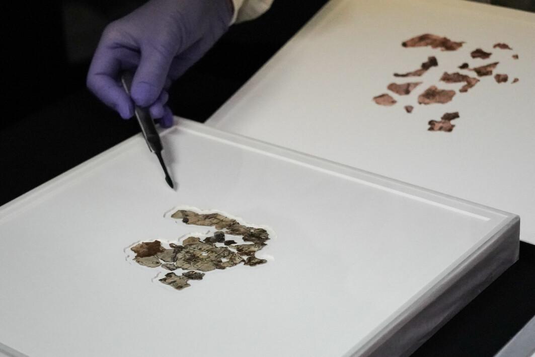 Fragmentene av den bibelske rullen inneholder tekst skrevet på gresk og er fra De tolv små profeter, som er del av Den hebraiske bibelen og Det gamle testamente.