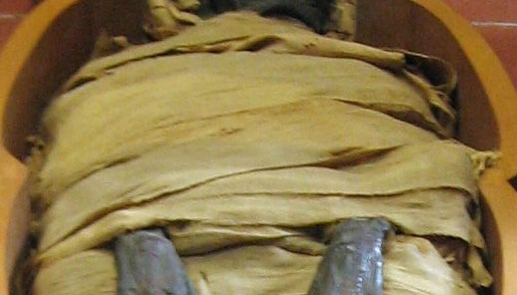 """<a href=""""http://en.wikipedia.org/wiki/File:Mummy_in_Vatican.jpg"""">Wikimedia Commons</a>"""