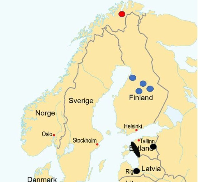 Kartet viser observasjoner av gullsjakal i Lakselv, Finnmark (rød) og i Finland (blå), i tillegg til det nærmeste kjente reproduksjonsområdet og territorielle individer i Baltikum (sort).