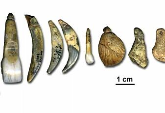 Neandertalerne hjalp kanskje mennesker med å lage kunst