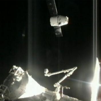 Romkapselen Dragon ankommer Den internasjonale romstasjonen 10.oktober 2012 med første ordinære forsyning. i 2013 skal VEGGIE sendes i en tilsvarende kapsel. (Foto: NASA)