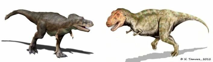 Tamura har laget flere varianter av Tyrannosaurus rex, men forteller at publikum synes å like den til høyre best. Den er den minst korrekte, vitenskapelig sett. (Foto: (Illustrasjoner: Nobu Tamura))