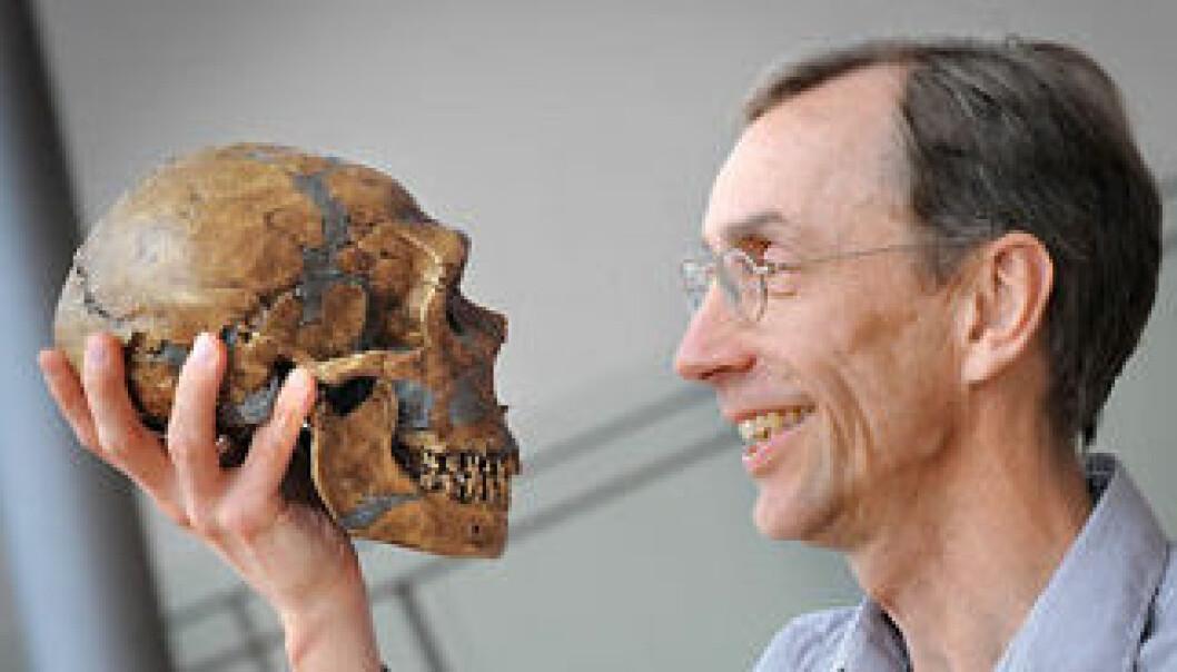Professor Svante Pääbo ved Max Planck-instituttet for evolusjonsantropologi i Tyskland har spilt en sentral rolle i studiet av neandertalerens genom. (Foto: Frank Vinken)