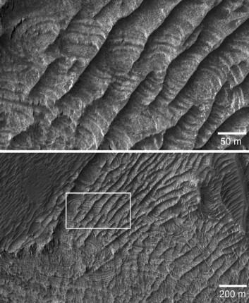 En ny type landformasjon på Mars er beskrevet. Den dannes av vinderosjon vi ikke har maken til på Jorda. (Foto: NASA)