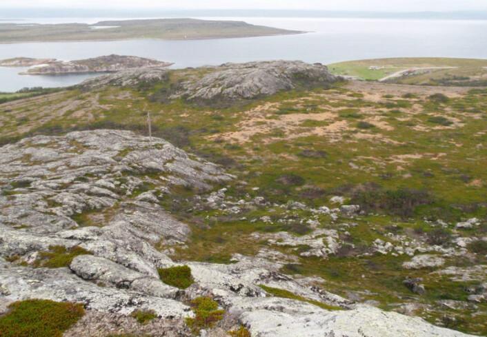 Boplassen Fállegoahtesadjeguolbba med Varangerfjorden i bakgrunnen. Funnene ble gjort på det flate området midt på bildet. (Foto: Jarmo Kankaanpää)