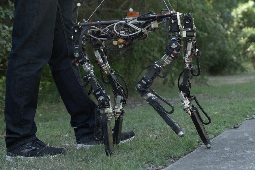 Fra gress til betong. Et stort skritt for en robot som selv skal finne ut hvordan den skal angripe et nytt underlag.