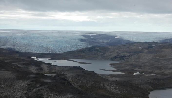 Forskerne undersøkte bergarter på plassen som kalles Isua på Grønland.