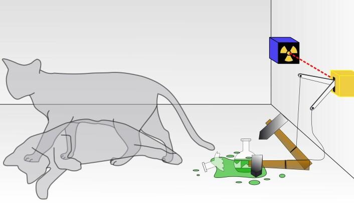 Et enkelt bilde av katten i boksen, som viser de forskjellige mulighetene.