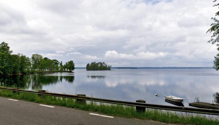 Mien er en dyp og populær innsjø med badeplasser og mye fiske. Meteoritten som traff Sør-Sverige skapte her i løpet av 30 sekunder et metorittkrater som opprinnelig kan ha vært 9 kilometer i diameter. Så store meteorittkratre får gjerne en opphøyning i midten, nettopp slik man finner i Mien med en øy i midten.