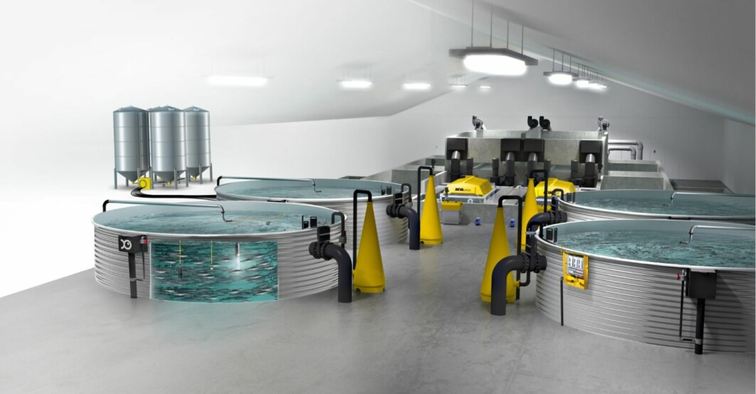 A major challenge linked to land-based facilities for fishfarming is the adequate control of microbial conditions and chemical water quality. The project DigRAS will look into this. This is how future land-based fish farms are going to look like.