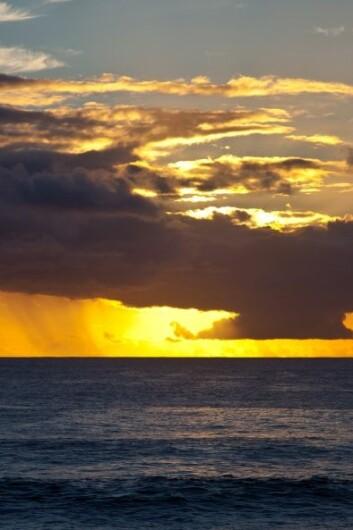 I det sørlige Stillehavet finnes det største området med oksygenfattig vann – en «Oxygen Minimum Zone» (Foto: Colourbox)
