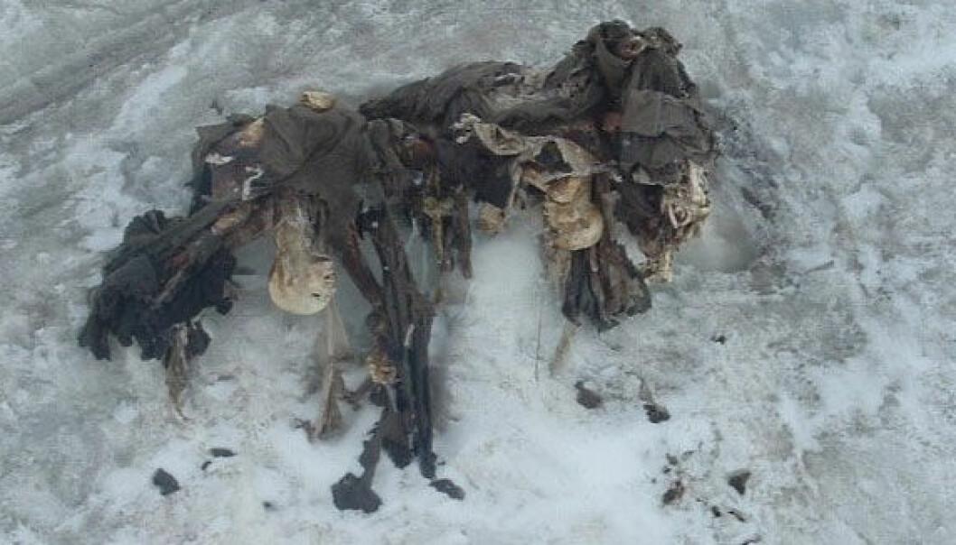 De tre Habsburg-soldatene som ble funnet på 3650 meters høyde i 2004 kan ha vært bårebærere. Museo della Grande Guerra, Peio