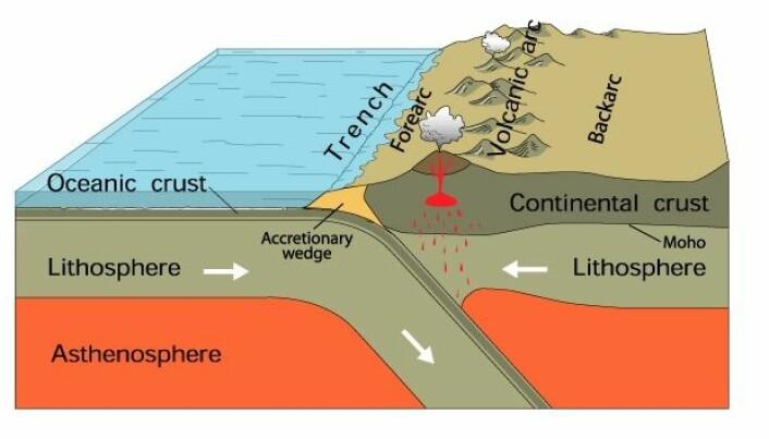 Her ser du hvordan en tynn havbunnplate (Oceanic crust) forsvinner inn under en tykkere kontinentalplate (Continental crust).