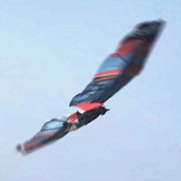 Videokunst: Fantasifiguren Jarno Smeets flyr med vinger i dette fingerte opptaket laget av den nederlandske animatøren Floris Kaayk. (Foto: Floris Kaayk, fra video på YouTube)