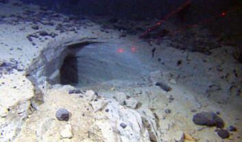 Grotter på 2200 meter djup i skredmassar på havbotnen utanfor Vesterålen. Avstanden mellom dei raude laserprikkane er 10 centimeter. (Foto: NGU/Mareano)