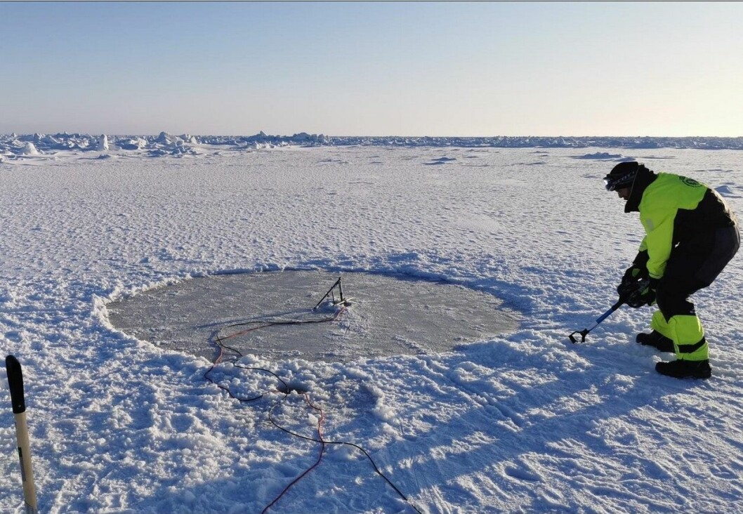 Tristan samler data som en lyssensor om er plassert på bunnen av havisen.