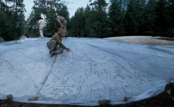 Jan Magne Gjerde i ferd med å tegne helleristningene på Kanozero over på plast. (Foto: Jan Magne Gjerde)