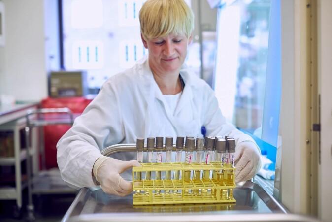 """– Vi sekvenserte hele DNA-et til de identifiserte salmonellabakteriene, og fikk bekreftet at dette var <span class=""""italic"""" data-lab-italic_desktop=""""italic"""">S. Enteriditis</span>, forklarer Camilla Sekse."""