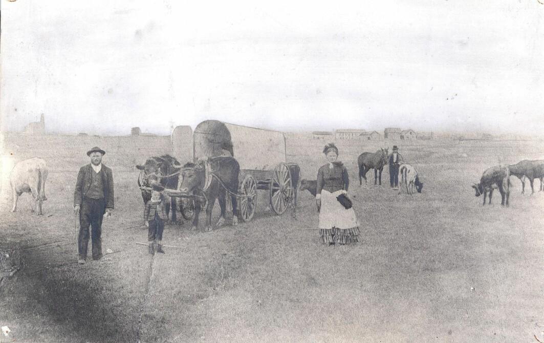 Nordmenn i USA reiste vestover på prærien for å finne ny, billig jord å etablere seg på. De reiste sammen med hele familien, og alt de eide.