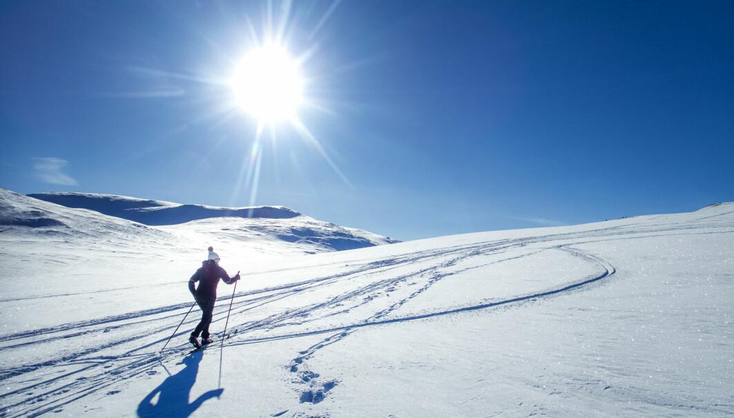 Dte har blitt mindre populært å gå på ski i Norge, finner forskerne.