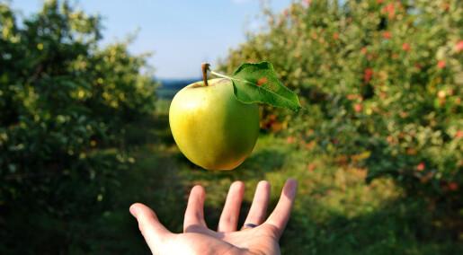 Hvis epler faller nedover, faller da anti-epler oppover?